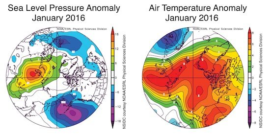 Arctic Anomaly