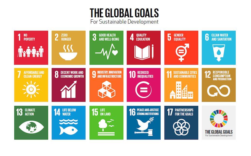 The SDG Compass: toward global sustainable development