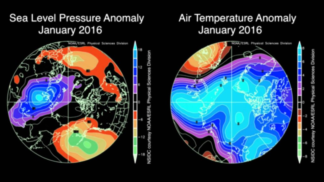 Arctic anomaly - January 2016